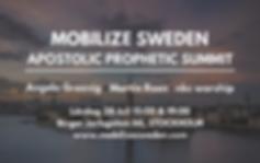 MOBILIZE SWEDEN-2.png