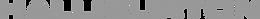 Halliburton Logo_Greyscale.png