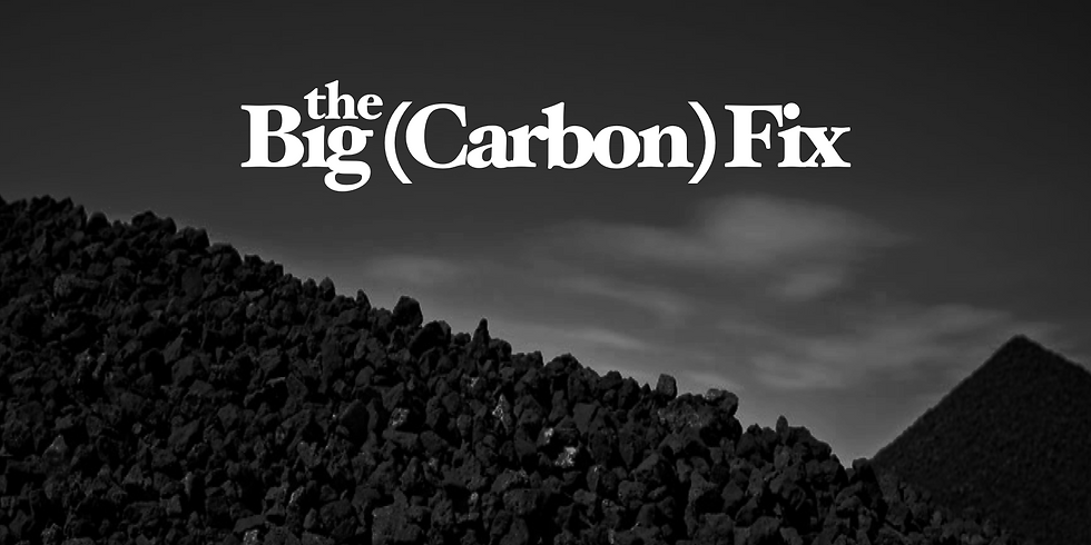 The Big Carbon Fix: An Evening with Dr. Steve Ghan