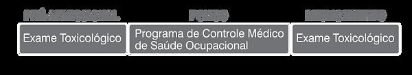 Exame Toxicologico_05.png