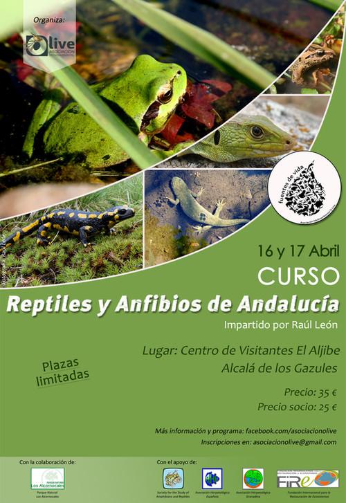 """Curso """"Reptiles y Anfibios de Andalucía"""""""