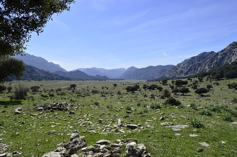 Llanos de Líbar