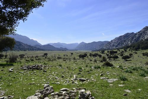 Mejoras forestales en los Llanos de Líbar