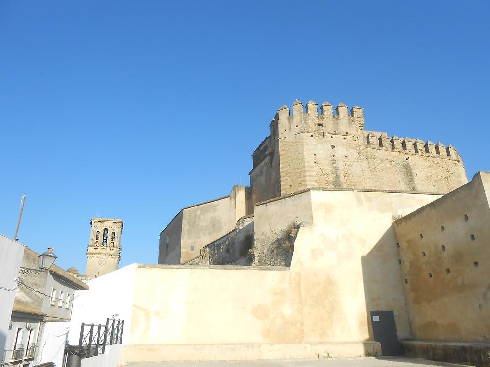 Mechinales, castillo y torre. Hábitat del primilla