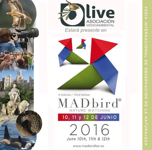 O-Live acudirá a la III edición de la feria ornitológica MADbird Fair en Madrid