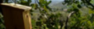 Fomento de la biodiversidad en espacios agrícolas