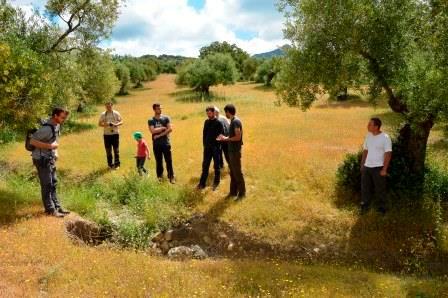 Visita al olivar