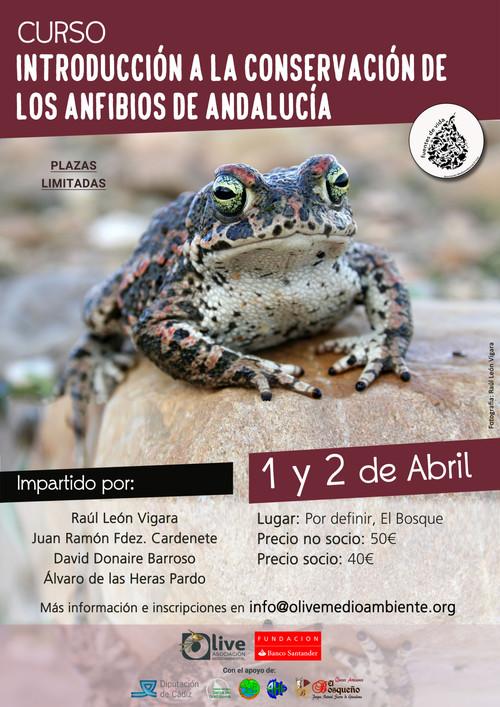 Curso Introducción a la Conservación de los Anfibios de Andalucía