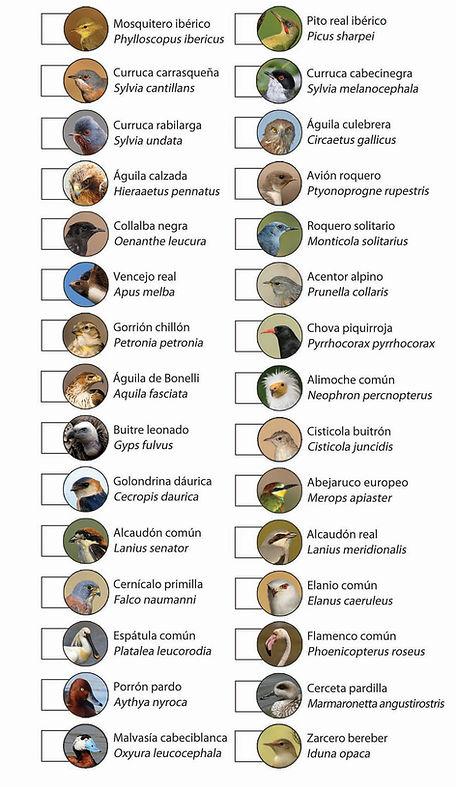Aves destacadas