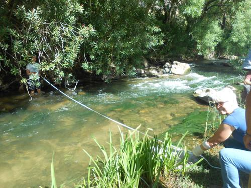 Evaluación de la calidad del hábitat fluvial en el río Guadiaro