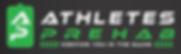Ap Logo Signature (2).png