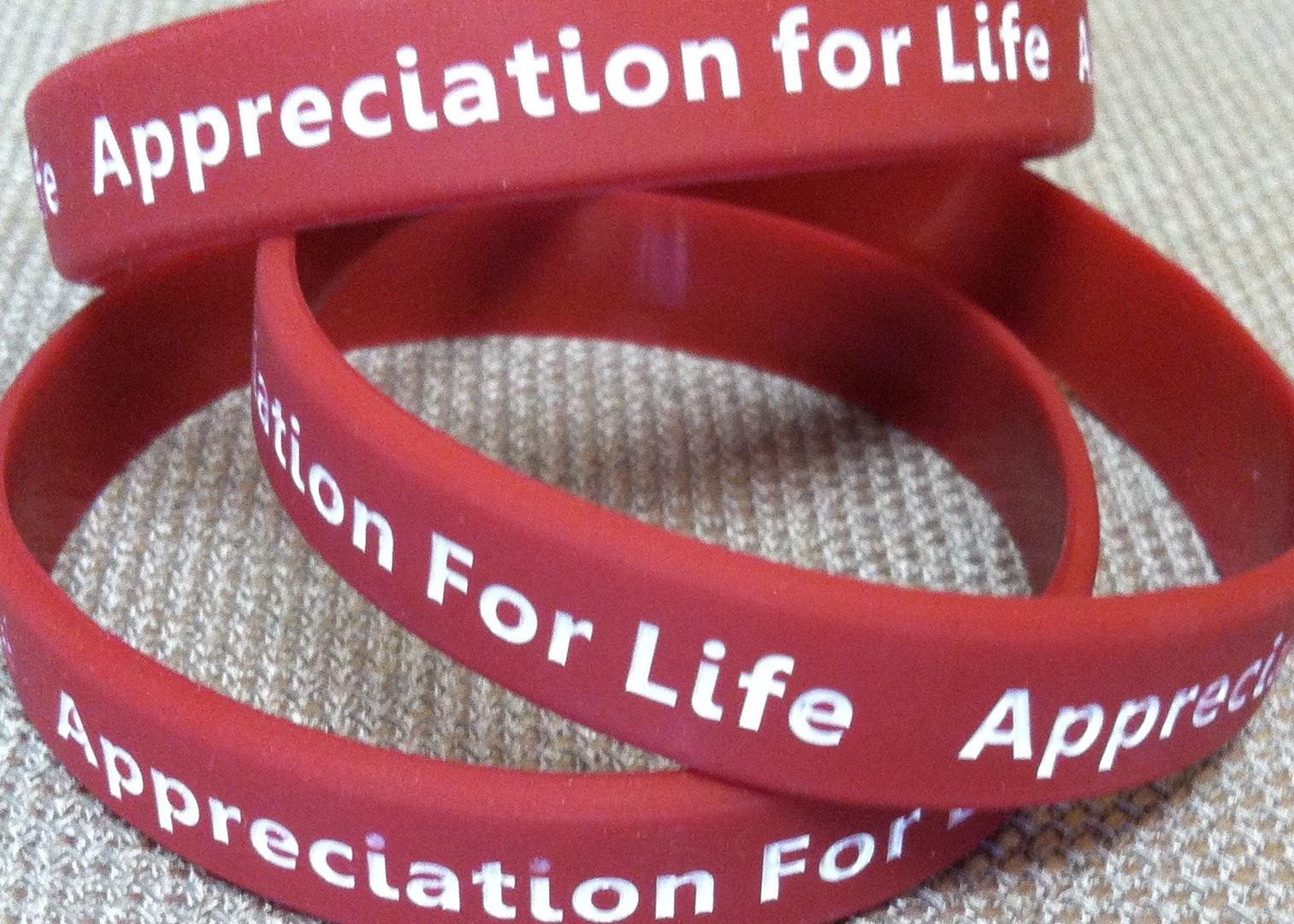Appreciation for Life