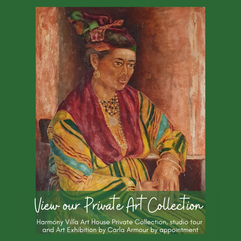 Harmony Villa Art House Private Collection Tours