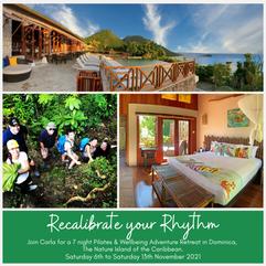 Recalibrate your Rhythm Retreat at Jungle Bay 6th to 13th November 2021