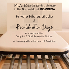 Private Studio Pilates sessions & Retreats at Harmony Villa in Dominica, the Nature Island of the Caribbean