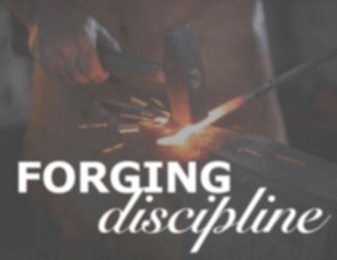 Forging Discipline Sermon Series.jpg