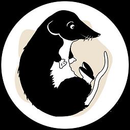 logo musaraigne.png