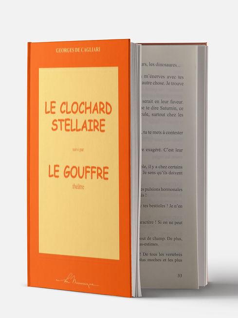 le-clochard-stelaire_edited.jpg