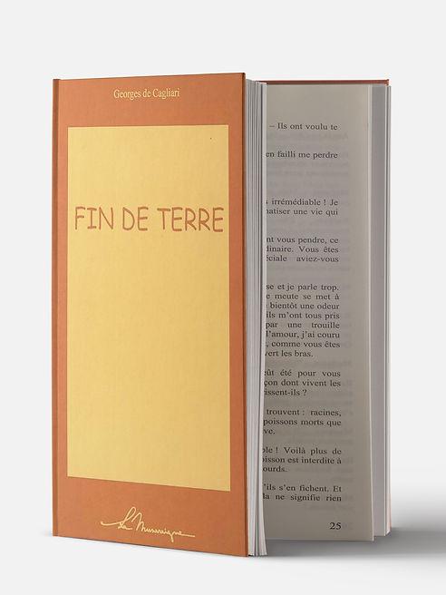 Fin-de-terre_edited.jpg