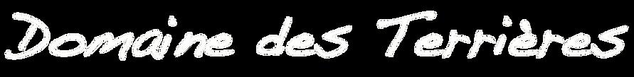 dt_logo15.png