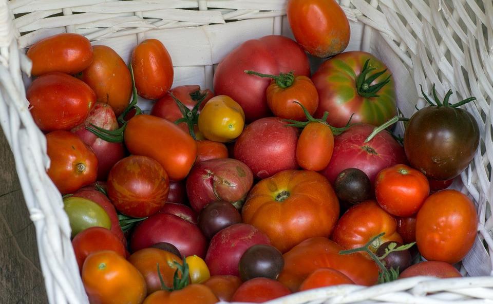 vegetables-930753_960_720.jpg
