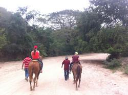 Jody's Bucerias Horse Back Riding
