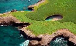 Marieta Islands Bucerias Sea Tours