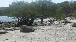Jody's Bucerias Punta Negro