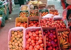 Bucerias Fresh Produce
