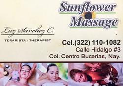 Sunflower Massage Bucerias Card _edited_