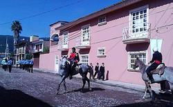 Bucerias Dancing Horses