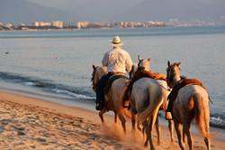 Bucerias Getting Around by Horse