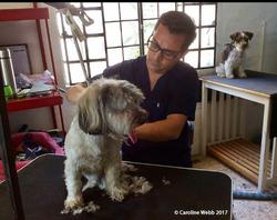 Dr. Eduardo PetVet & Care Bucerias