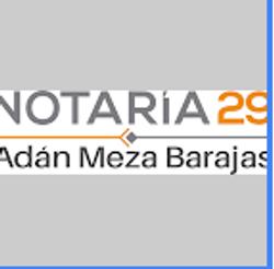 Notaria29 Bucerias Logo