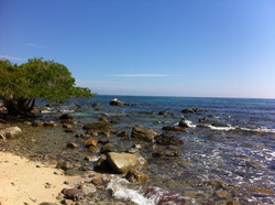 Nearby Bucerias Punta Negra