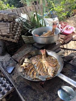 Lunch BBQ Fresh Fish Bucerias Free Fun