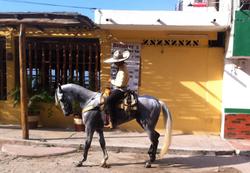 Bucerias Events Horses Nayarit Jody's Bucerias