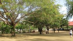Vista Paraiso Near Bucerias