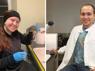 The lab to host 2 REU students this Summer