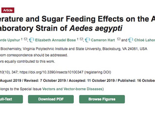 New paper out!