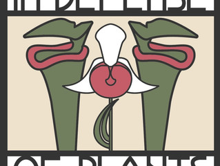 In Defense Of Plants: podcast about our work on orchid pollination