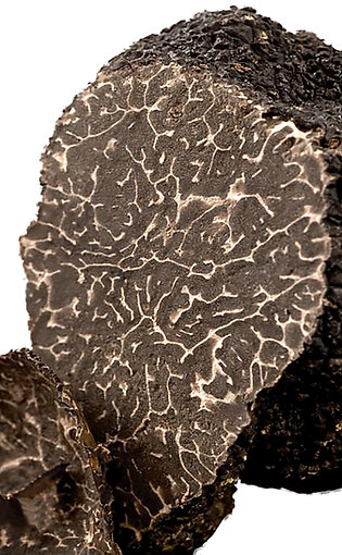 Fresh Black Truffle of Norcia 1.76oz (50g)
