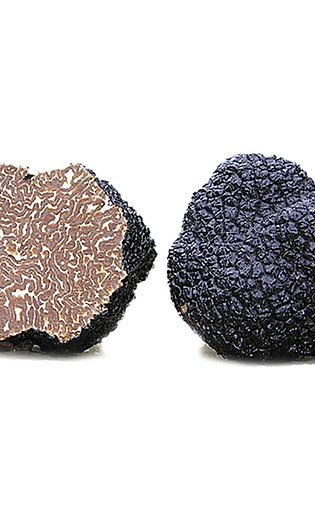 Fresh Black Burgundy Truffle 3.5 oz (100g)