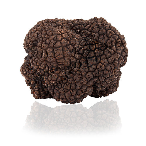 Fresh Black Summer Truffle 3.5oz (100g)
