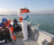 monitoramento embarcado simulado.JPG
