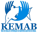 remab_transp.png