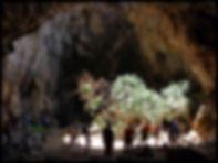 palmera de cueva neptuno.jpg
