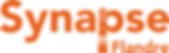 Synapse flandre - logo orange.png