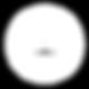 Torque_Logo_Wix.png