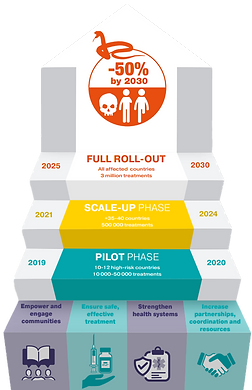 The strategic objectives, target, and implementation phases within the WHO SBE strategy